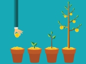 growth-capital-money-tree.jpg