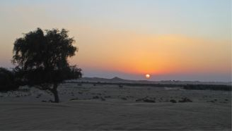 R-Al Ain Desert 2014 (1)