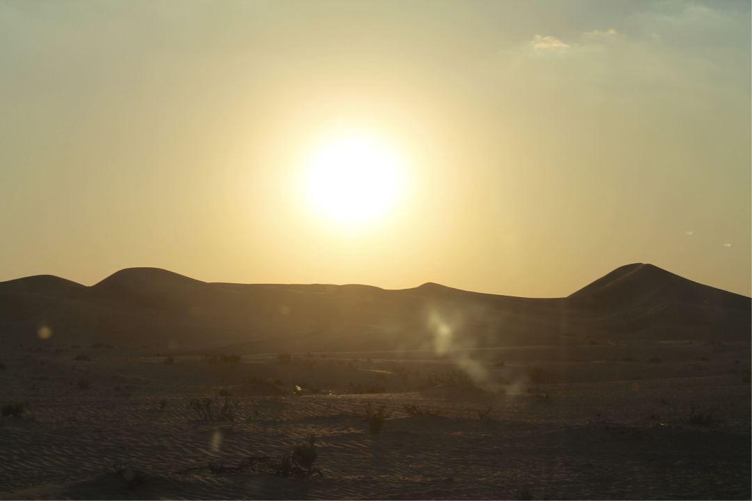 R-Al Ain Desert 2014 (37).jpg