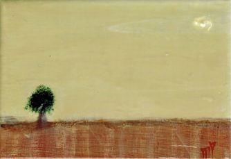 R-Landscape 14-004